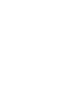 Roamography logo